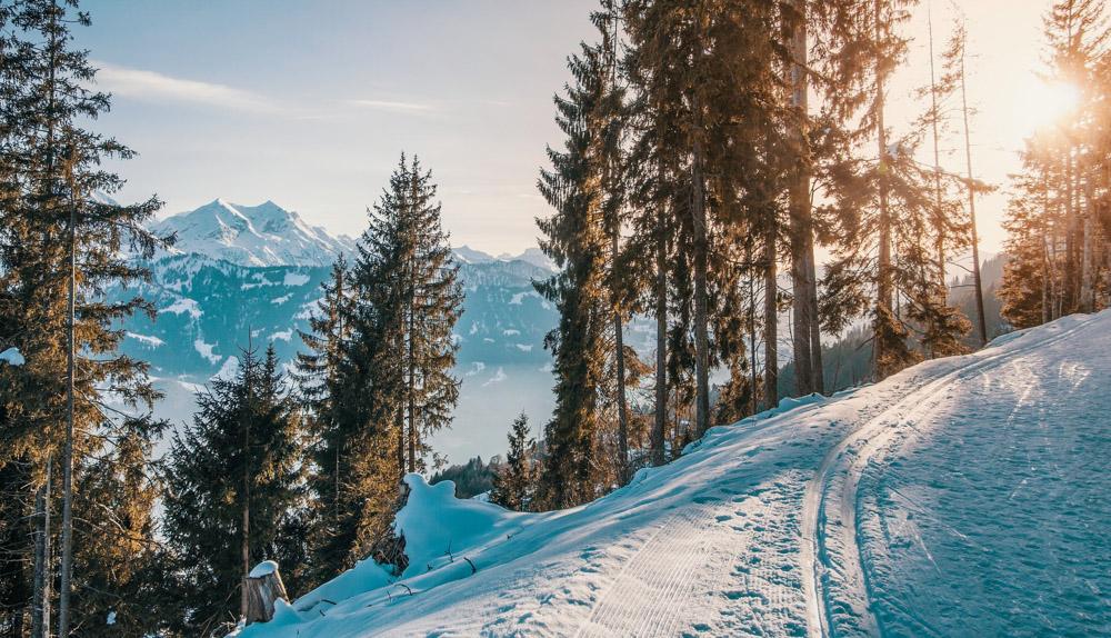 Zimowe aktywności w górach